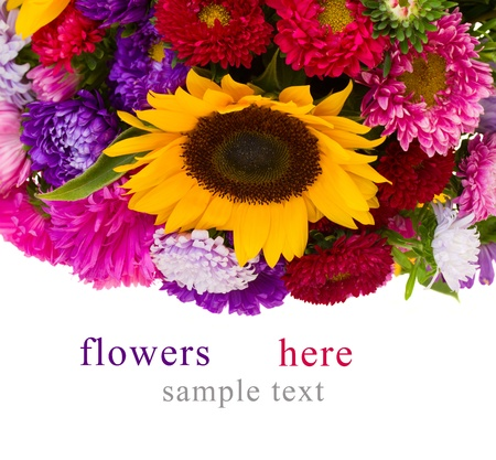 border  of sunflowers and asters  isolated on white background photo