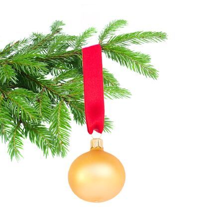 ball hanging on fir tree isolated on white background Stock Photo - 21866068