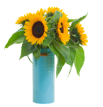 beautiful  sunflowers bouquet  in pot isolated on white background Stock Photo - 22230250