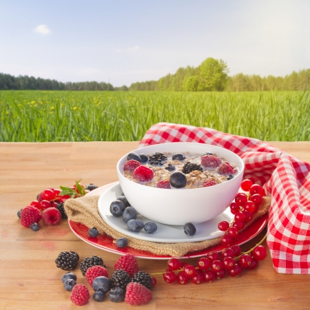 The oat flakes with molk and berries on wooden table in garden