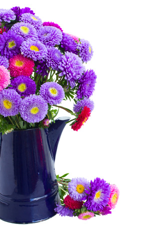 aster: bouquet of aster flowers in  blue pot isolated on white background Stock Photo