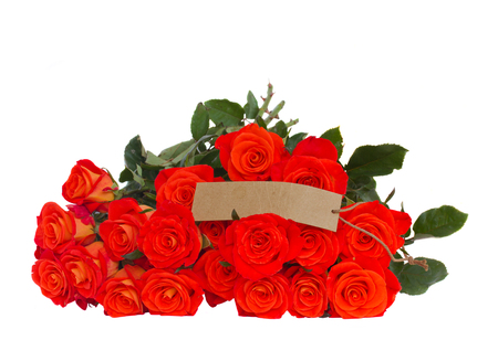 bright orange roses  with empty tag  isolated on white background photo