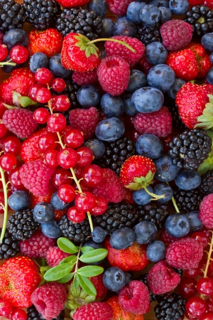 bluberry, raspberry, blackberry and red currrunt colorful berries photo