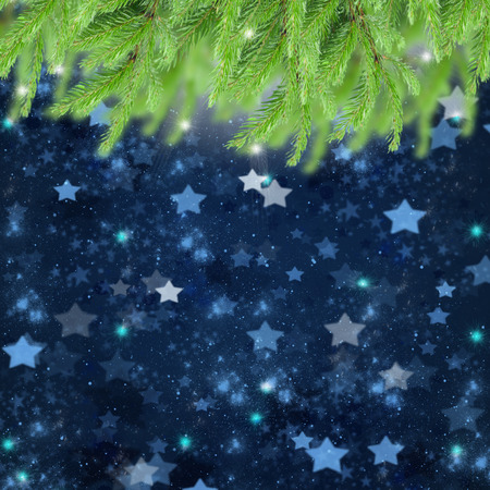 stary: christmas background with fir traa and stary night sky