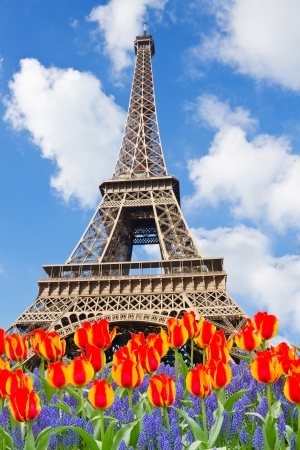 EiffelTower in  spring day in Paris,  France photo