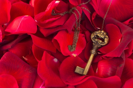 Key with crimson  rose petals as a symbol of love photo