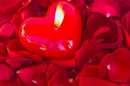 burning heart candle with red  rose petals photo