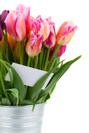 Bunch  of pink   tulips flowers  with greeting card  isolated on white  photo