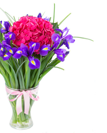 pink hortensia and violet irise  flowers bouquet in vase  isolated on white background photo