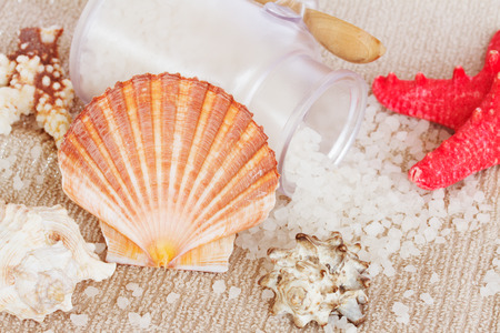 Sea spa treatment setting with scallops comb shell photo
