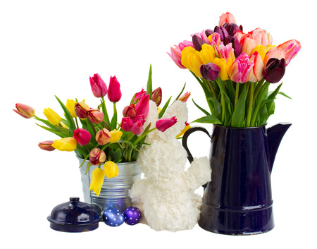 Pots with  bunch of spring  tulips flowers for easter  isolated on white background photo