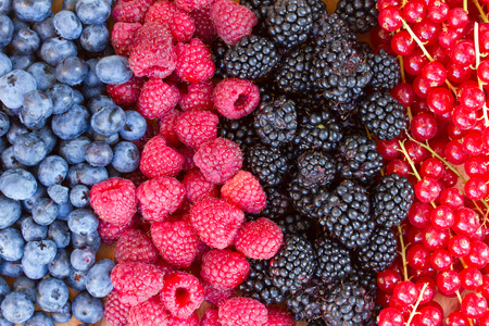 rows  of fresh berries on  table - blackberry, raspberry and blueberry photo