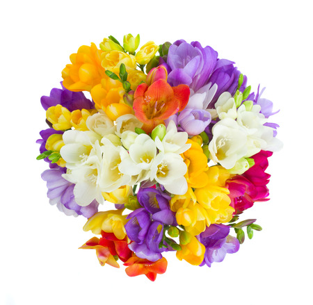 round bouquet of freesias flowers  isolated on white background