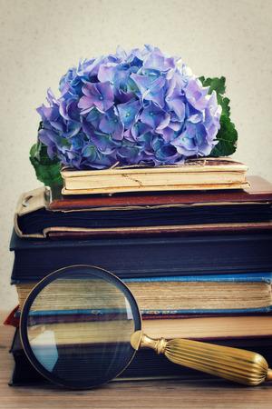 堆与蓝色hortenzia花的葡萄酒旧书和看在桌上堆积的玻璃