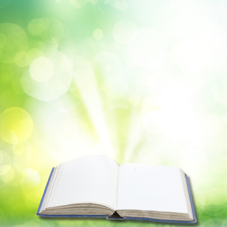 Open book in green garden  with light photo