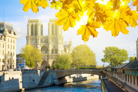 Notre Dame  cathedral church in  Paris at autumn sunny day, France photo