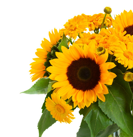 fresh sunflowers and marigold flowers bouquet isolated on white background photo