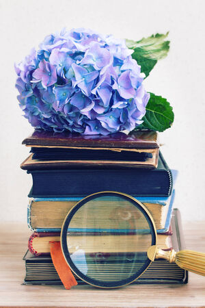 pile of vintage old books with blue hortenzia flowers  and finding glass photo