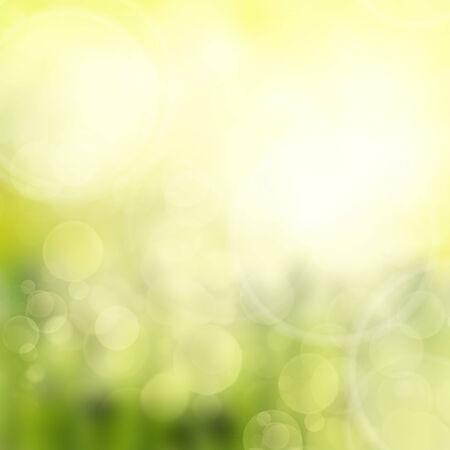 yello: spring green and yello garden  bokeh background with sun beams