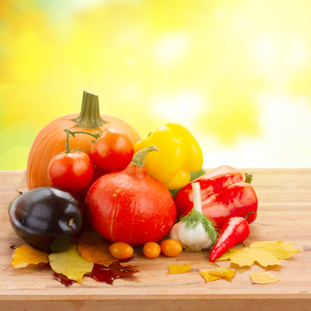 fall ripe of colorful vegetables  on table in yellow garden photo
