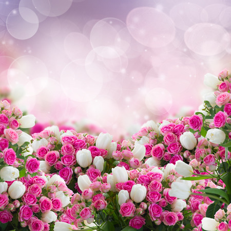 pink tulips: bunch  of fresh pink roses and white tulips flowers  on bokeh  background Stock Photo
