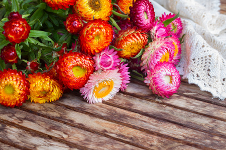 everlasting: Bunch of fresh Everlasting flowers   on wooden table