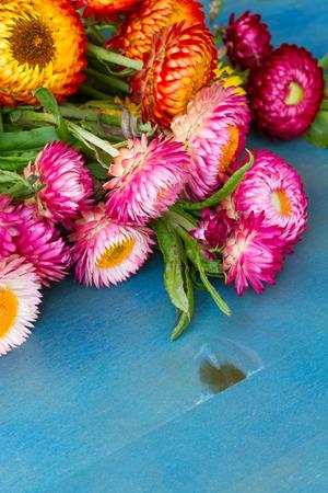 floral bouquet: Bouquet of Everlasting flowers bouquet  on blue table