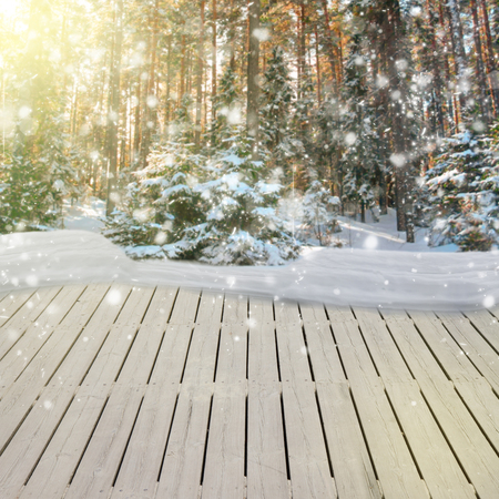 wooden planks in winter  forest with fir tree and snow photo