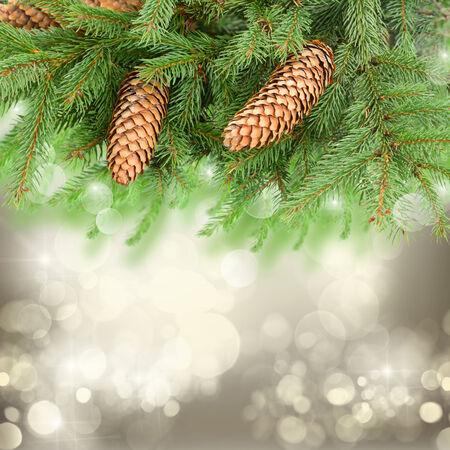 chrismas tree and pine cones photo