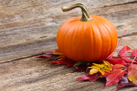 one orange pumpkin with fall leaves  on wooden textured  table photo