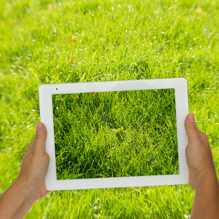 holding tablet against spring green background photo