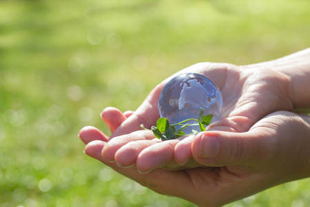 hand holding world: concept for environment protection