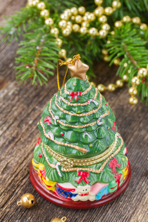 christmas evergreen tree photo