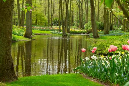 Colorful river landscape  in ызкштп dutch garden Keukenhof, Netherlands photo
