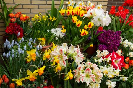 variety of spring flowers in pots on display in street shop