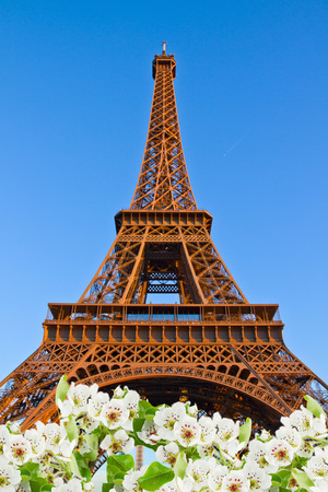 eiffel tower, France photo