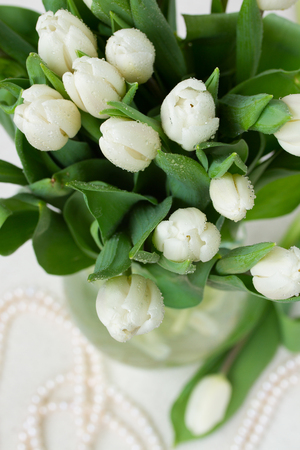 bouquet of white  tulips photo