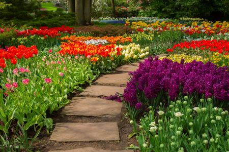 景觀: 石板路在花園繞 版權商用圖片
