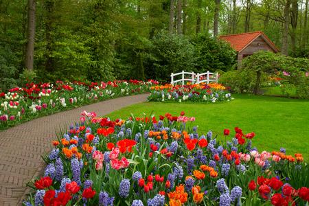 jardines con flores: Choza en un muelle Foto de archivo