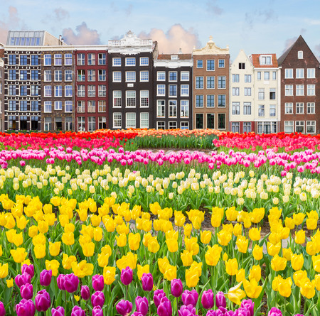 old canal of Amsterdam photo