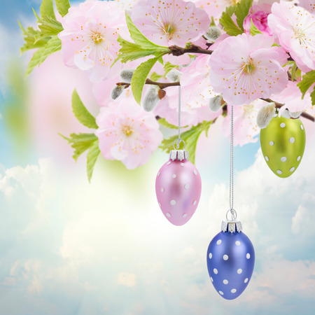 Colorful hanging easter eggs with cherry flowers  on blue sky background photo