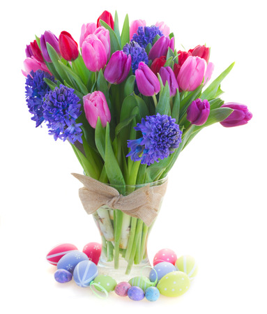 bunch of blue hyacinth and red, pink and purple tulip flowers close up  isolated on white background photo