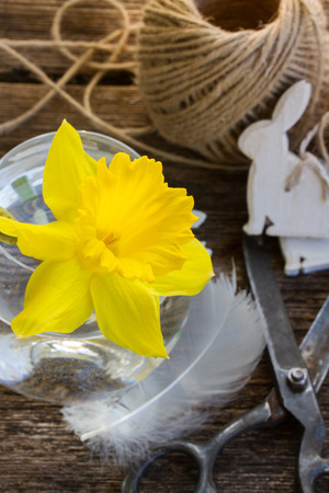yellow daffodil  with easter decorations on wooden table photo