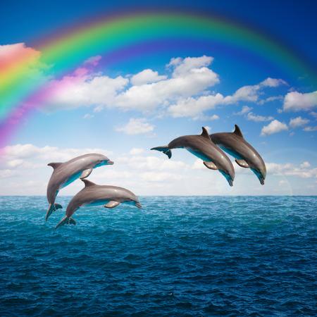 paquet de dauphins sautant