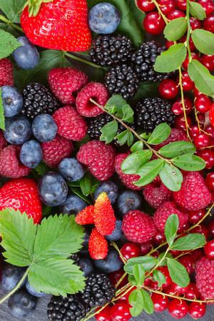 신선한 딸기의 잘 익은 스톡 콘텐츠