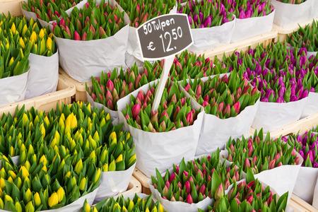 tulipan: Kolorowe tulipany na sprzedaż Zdjęcie Seryjne