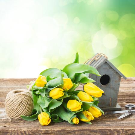 birdcage: Yellow tulips  with birdcage