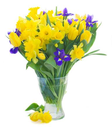 irises: spring narcissus, tulips and irises Stock Photo
