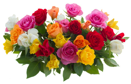 bunch of pink, yellow, orange, red, and white fresh roses isolated on white background photo