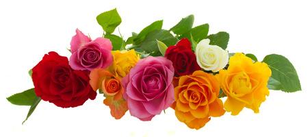 新鮮なピンク、黄色、オレンジ、赤い、および白新鮮なバラ白い背景で隔離の行 写真素材